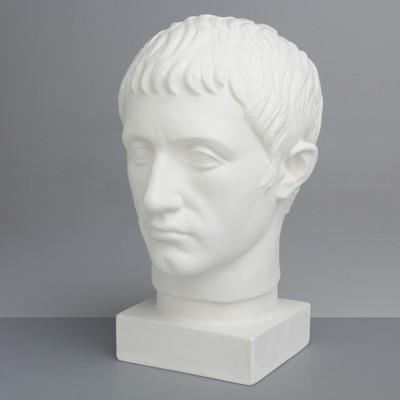 Гипсовая фигура Академическая Голова Германика 19*25*36 10-135