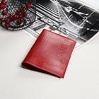 Обложка для паспорта, 5 карманов для карт, игуана, цвет красный