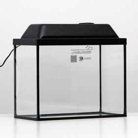 Аквариум прямоугольный Атолл с крышкой, 16 литров, 35 х 17 х 27/32,5 см, чёрный