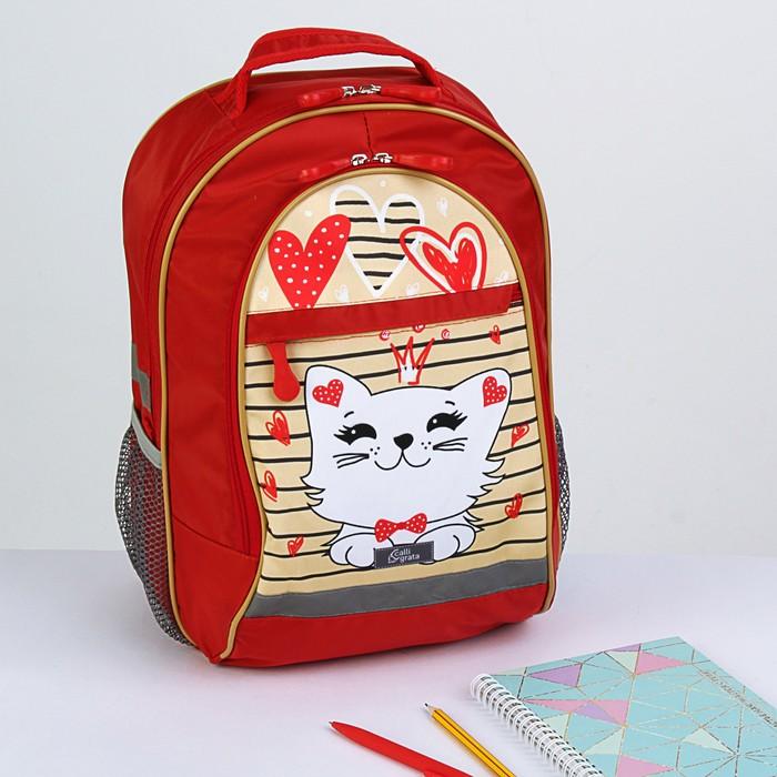 Рюкзак школьный с эргономической спинкой Calligrata Алекс 39x24x19 см для девочки, «Кошечки»