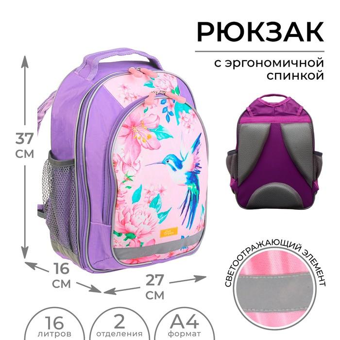 Рюкзак школьный с эргономической спинкой Calligrata Бонус 37x27x16 см для девочки, «Колибри»