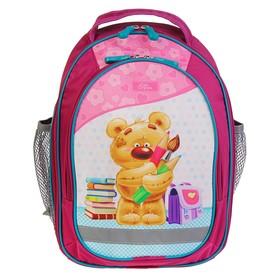 Рюкзак школьный с эргономичной спинкой, Calligrata, 37 х 27 х 16, «Мишка», розовый