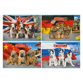 Альбом для рисования А4, 16 листов World of dogs, мелованный картон, МИКС