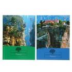 Бизнес-блокнот А6, 80 листов Nature, твёрдая обложка, глянцевая ламинация, микс