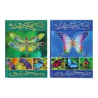 Бизнес-блокнот А6, 80 листов Rainbow wings, твёрдая обложка, матовая ламинация, тиснение фольгой, микс
