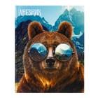 """Дневник для 5-11 класса """"Медведь в очках"""", твёрдая обложка, глянцевая ламинация, 48 листов"""
