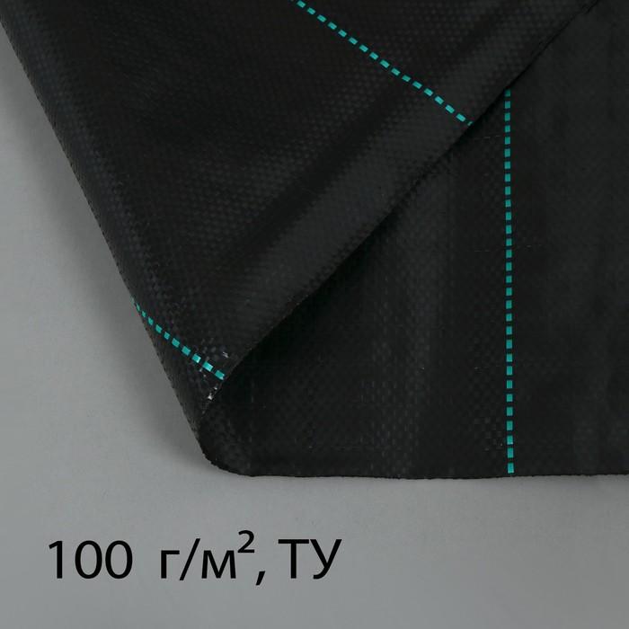 Агроткань застилочная, с разметкой, 5 × 2,5 м, плотность 100 г/м², полипропилен, чёрная, «Крон»