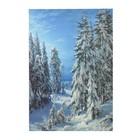 """Картина на подрамнике """"Зимняя ночь"""" 64*44 см"""