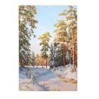 """Картина на подрамнике """"Зимний полдень"""" 64*44 см"""