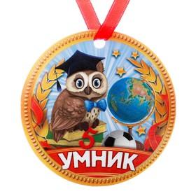 Медаль-магнит 'Умник' Ош