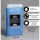 Аккумулятор холода, 600 мл, в твёрдой упаковке, 24.5х13.5х2.5 см
