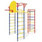 Детский спортивный комплекс Маугли 12, цвет синий/красный