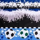 Постельное бельё 1,5сп «Футбольный фанат», 215х145 см, 220х150 см, 70х70 см, поплин - фото 105558894