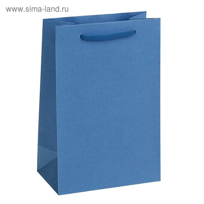Пакет подарочный 21 х 14 х 9 см, голубой