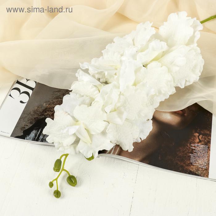 """Цветы искусственные """"Орхидея Параделия королевская"""" 15*100 см белая"""