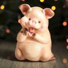 """Копилка """"Свинка улыбающаяся"""""""
