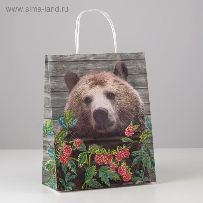 """Пакет крафт """"Медведь"""" 25 х 11 х 32 см"""