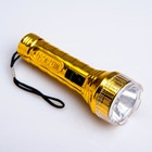 "Flashlight manual ""Metallic"", 1 LED, mix, 3.5x10 cm"
