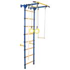 Детский спортивный комплекс Юный Атлет «Пристенный-Лайт», 750 × 900 × 2200 мм, цвет синий