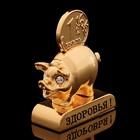 Сувенир «Свинка с пожеланием здоровья», 3×1,3×6 см, с кристаллами Сваровски