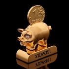 Сувенир «Свинка с пожеланием удачи», 3×1,3×6 см, с кристаллами Сваровски