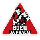"""Sticker """"Fighter"""""""