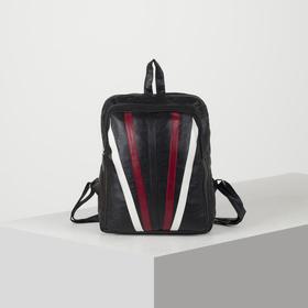 Рюкзак молодёжный, 2 отдела на молниях, цвет чёрный