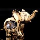 Сувенир «Слоник», 7×4×4,5 см, с кристаллами Сваровски