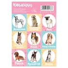 """Stickers with coloring on the back of """"Dogs"""",11 x 16 cm"""