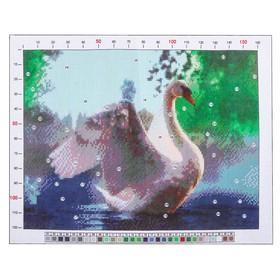 Канва для вышивания с рисунком «Лебедь», 28 х 37 см Ош