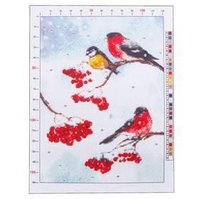 Канва для вышивания с рисунком «Снегири», 28 х 37 см Ош