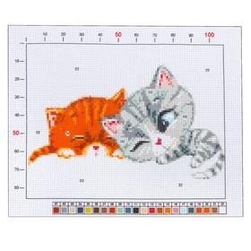 Канва для вышивания с рисунком «Котята», 20 х 25 см Ош