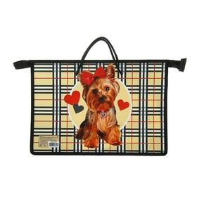 "Folder with handles plastic, A4 335 x 235 x 55 mm Calligrata ""Dog"", handle-drawstring"
