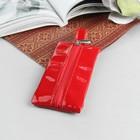 Ключница К-2, 12*2*6, отд на молнии, метал кольцо, лак италия красный