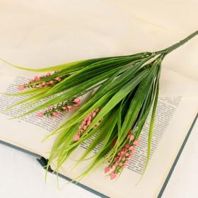 A bouquet of lupins 35 cm, mix