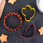 """Набор форм для вырезания печенья """"Природа"""", 3 шт: 7,6/8,5/6,3 см - фото 308034509"""