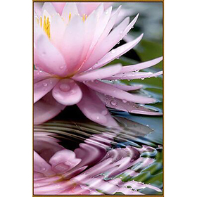 Алмазная мозаика «Священный цветок», 28 цветов