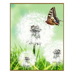 Алмазная мозаика «Одуванчик», 27 цветов