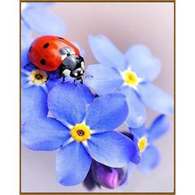 Алмазная мозаика «Незабудки», 29 цветов