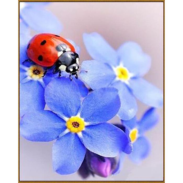 """Алмазная мозаика """"Незабудки"""", 29 цветов"""