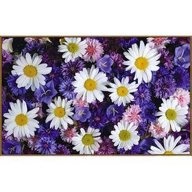 Алмазная мозаика «Цветочный микс», 31 цвет