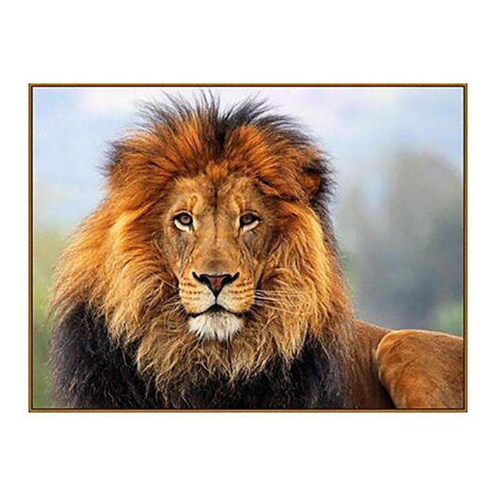 Алмазная мозаика «Царь зверей», 18 цветов