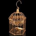 """Клетка шестиугольная """"Птицы"""", 23х14см, золотистая"""