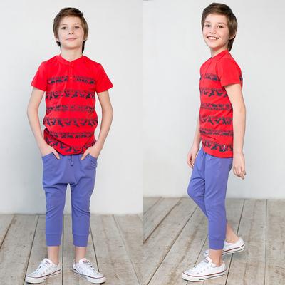 Бриджи для мальчика, рост 134 см, цвет фиолетовый 122-336-09