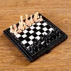 """Chess """"Camp"""", 9х4.5x3 cm, mix"""
