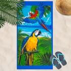 Вафельное полотенце пляжное «Попугай» 80х150 см, разноцветный, 160г/м2,хлопок 100%