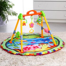 Игровой развивающий центр «Черепашка», с ковриком, музыкальный