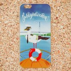 Чехол для iPhone 6 телефона «Владивосток» (чайка), 7 х 14 см