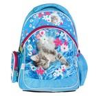 Рюкзак школьный эргономичная спинка Rachael Hale 521, 38 х 29 х 13 см, голубой