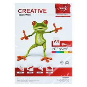 Бумага цветная А4, 250 листов «Креатив» Интенсив, 5 цветов, 80 г/м²